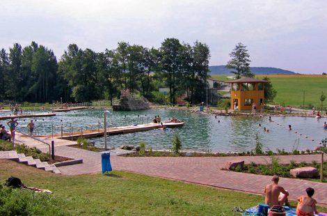 Schwimmteich Schöllkrippen