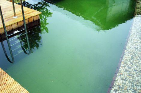 Schwimmteich Prächting
