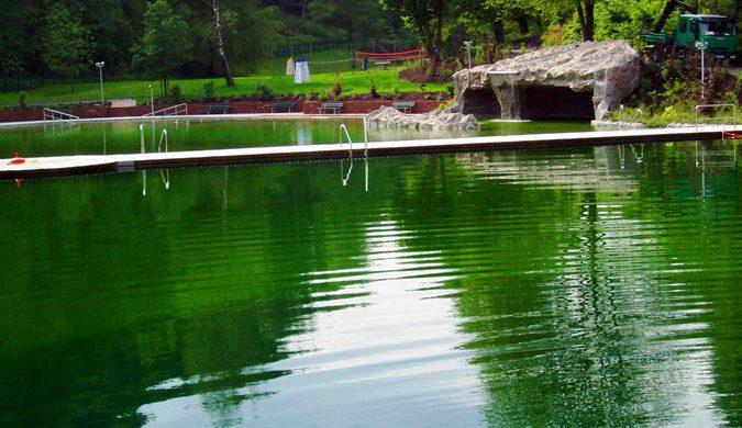 Schwimmteich Gaggenau